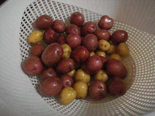 LilPotatoes