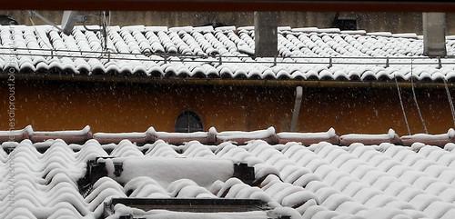 I-tetti-di-Bologna