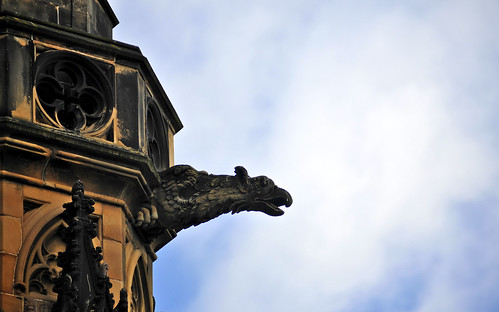 Gothic Griffin On The Scott Monument