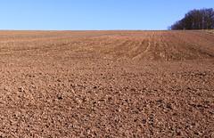 Three parts (:Linda:) Tags: brown texture field germany village bluesky thuringia soil blauerhimmel baretree erde poppenwind erdboden naturaltexture vorfrhling prespring wolkenloserhimmel erdreich ackerboden nackterbaum