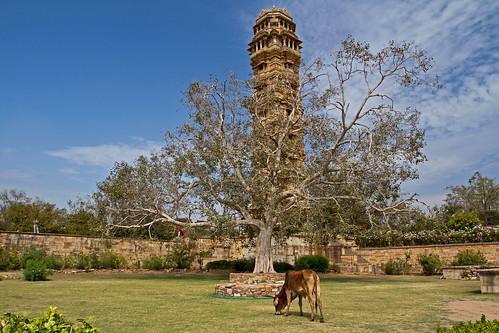 The tower at Chittorgarh Fort
