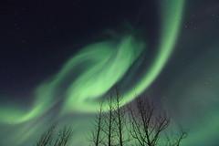Iceland (olgeir) Tags: travel winter sky night photography dawn lights iceland photos goddess aurora polar northern northernlights auroraborealis borealis phenomenon nordlicht norurljs kold  olgeir island oursolarsystem lights northern nordlicht aurora iceland deepspace nightlights norurljsin polar