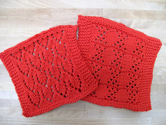 Beginning Lace Washcloths