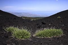 Etna (Guido Havelaar) Tags: italien italy volcano italia sicily etna sicilia volcan vulkan vulkaan vulcão 意大利 bellaitalia италия italiantourism italiaturismo turismoitaliano