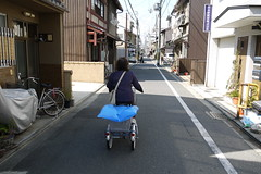 Adult Tricycle Kyoto