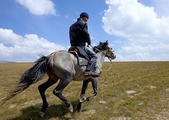 Horse vs Car -  Song Kol Lake, Kyrgyzstan (Eric Lafforgue) Tags: people horse man male animal horizontal clouds mammal person one asia exterior horizon fulllength bluesky riding gallopinghorse centralasia kyrgyzstan humanbeing nomads saddle oneperson horseriding backview gallop colorphoto bridle horseman kyrgyzrepublic kirghizistan kirgistan 9578 kirghizstan kirgisistan  nomadiclifestyle   quirguizisto songkollakearea
