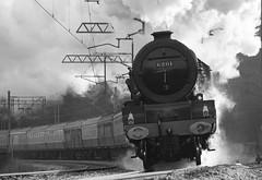 princessbp (Staffs Oatcake) Tags: stone pacific princess steam kettle railways staffordshire stoke nst congleton knotty leekbrook northstaffordshire kidsgrove