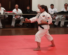 martialarts karate tournament seminar kata kobudo blackbelt tonfa shuriryu denisemiller shuricup internationalshuriyryuassociation