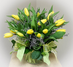 "#53ED $35/ 10 Tulips $40/ 12 Tulips - $50/ 18 Tulips - $60/ 24 Tulip Bouquet! What could say spring more than a beautiful vase of tulips.  This bouquet would bring a smile to any recipients face! • <a style=""font-size:0.8em;"" href=""http://www.flickr.com/photos/39372067@N08/5552186506/"" target=""_blank"">View on Flickr</a>"