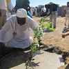 Volunteers plant 1,000 trees in rural Khartoum