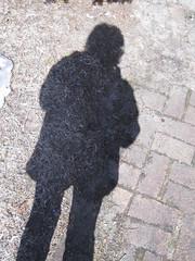 I see my shadow