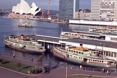 Sydney Ferries ferries Kameruka, Lady Denman and another ferry, Manly and Port Jackson Steamship Company ferries Bellubera and Baragoola at the wharves at Circular Quay, Sydney, New South Wales, Australia.