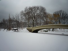 Bow Bridge, Central Park, Winter, New York City 16 (Vivienne Gucwa) Tags: city nyc newyorkcity winter urban snow ny newyork nature landscape lumix centralpark manhattan urbanexploration gothamist snowfall curbed winterwonderland snowscape winterlandscape urbanphotography uppermanhattan wnyc panasoniclumix snownyc winternyc cityphotography centralparknewyorkcity winternewyorkcity snowstormnyc wintercentralpark snowcentralpark lumixfz35 snowstormnewyorkcity january262011snowstormnyc