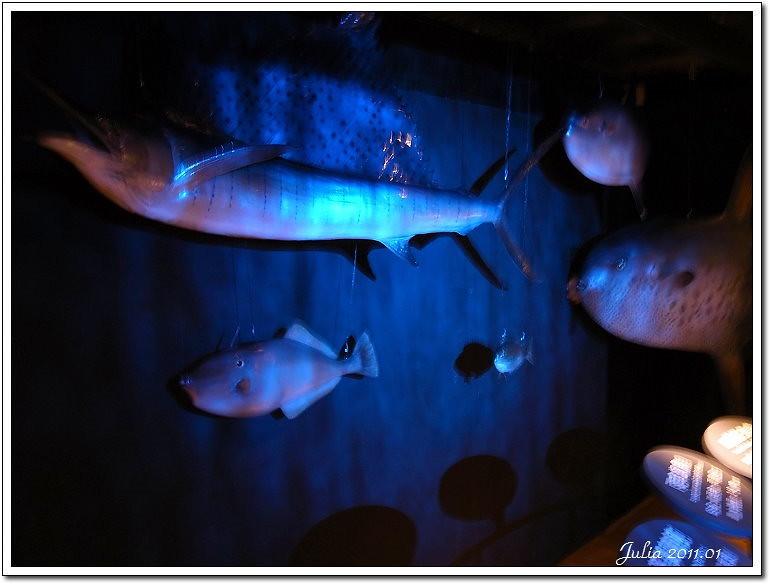 七星柴魚博物館 (11)