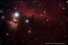 NGC2024 - Flame Nebula and IC434 / Barnard 33 - Horsehead Nebula in the Constellation of Orion (Simon Todd Astrophotography) Tags: longexposure canon flame nebula astrophotography orion infrared astronomy dslr ngc2024 ic434 horsehead celestron nebulae nebulosity hydrogenalpha irishastronomy barnard33 450d autoguider dslrastrophotography Astrometrydotnet:status=solved starshoot Astrometrydotnet:version=14400 backyardeos Astrometrydotnet:id=alpha20120936450116 dslrimaging dslrcooling