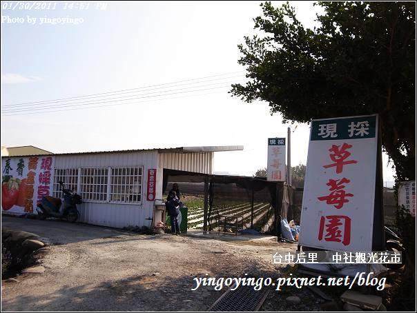 台中后里_中社光觀花市20110130_R0017639