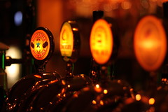 Newcastle Brown Ale (TheFella) Tags: travel dog canon newcastle eos 50mm europe sweden ale sverige tap 18 scandinavia malm conor macneill 500d northerneurope newcastlebrownale beerpumps thefella conormacneill