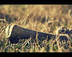 A bone in the field? (Jordi Molas) Tags: broken grass hair nikon soil bones terror bone macabre huesos hueso roto suelo hierba pelos chills macabro d90 escalofrio flickrtravelaward