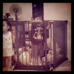 Seth commandeered Christine's cage for awhile. (alphadarius) Tags: square squareformat iphoneography instagramapp uploaded:by=instagram foursquare:venue=1131848