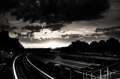 Platform (Zeromusta) Tags: city sunset sky blackandwhite bw sun white black station train blackwhite afternoon horizon low sydney platform rail trains redfern cityrail dailyshoot ds445