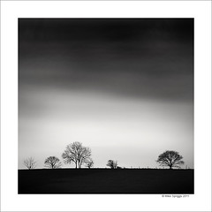 Seven Trees (Mike. Spriggs) Tags: trees tree rugeley nd110bw longexposurestaffordshire