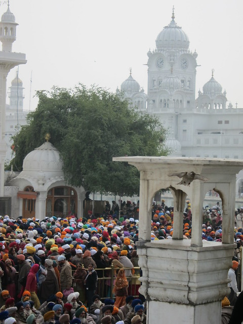 Golden Temple crowd