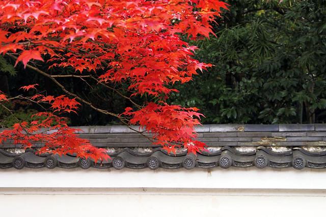 20101114_111951_秋篠寺