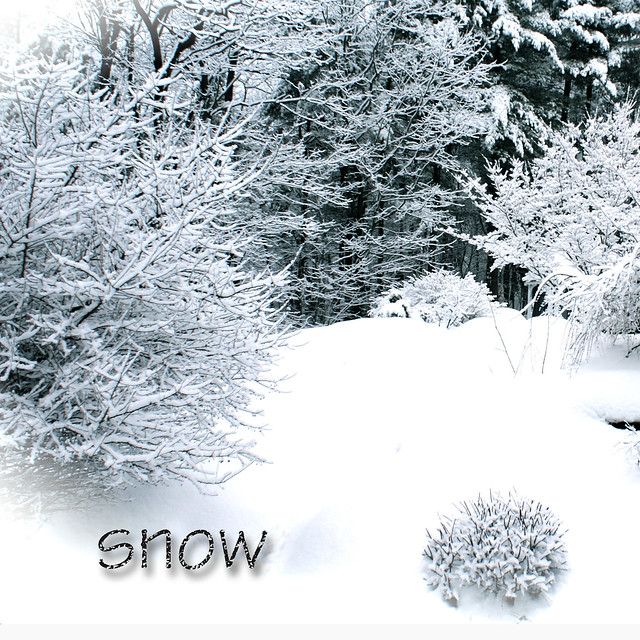 Skinny-Mini homework Snow 2