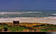O cabalo branco do demo (Ronquete) Tags: costa praia beach water mar agua nikon raw nef playa galicia galiza auga paisaxe costadamorte fisterra galego galega d90 galician mardorostro ronquete ríacostadamorte findocamiño