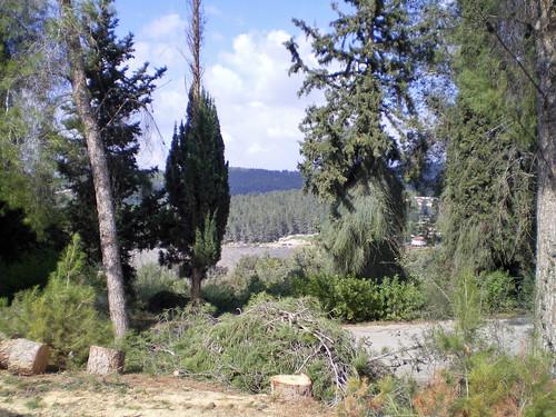 184 View from Eretz HaChaim