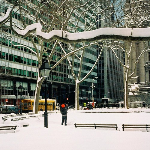 Bowling Green Park in the snow