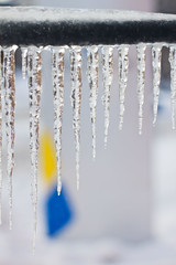 Icicles and the schools logo
