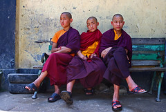 Gangtok4 (Hari Adivarekar) Tags: streetphotography monastery monks sikkim gangtok travelphotography youngmonks childmonks