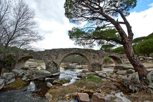 El Puente Mocha