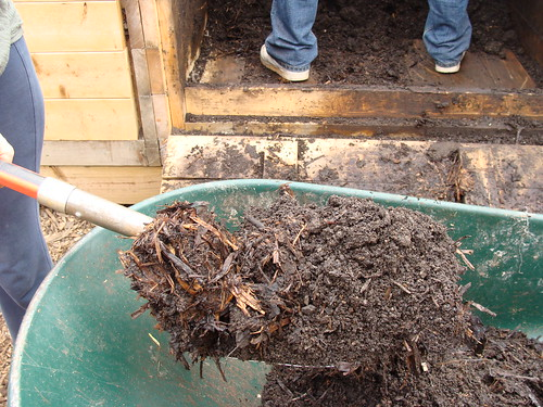 Vermiculture -- Before