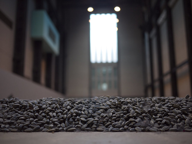 Ai Wei Wei's Sunflower seeds at the Tate Modern