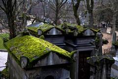 Le Cimetiere du Pere Lachaise (stephanie.versin) Tags: paris cemetery graveyard delete9 delete5 delete2 delete6 delete7 delete8 delete3 delete delete4 save save2 cimetiereperelachaise