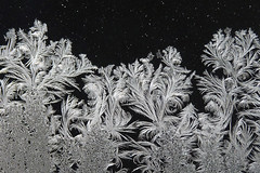 Ice Art (njchow82) Tags: ice home window nature frost swirls icesculpture intricate feathery onblack iceart beautifulexpression njchow82 dmcfz35
