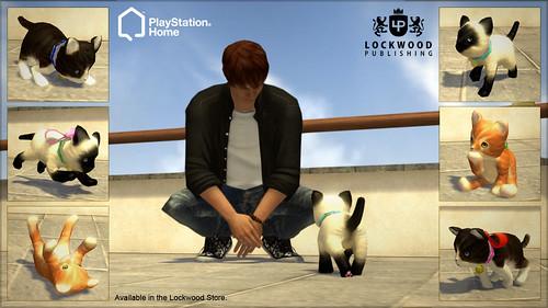 Kittys_Large_SCEE