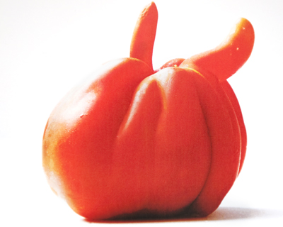 pomodoro cornuto