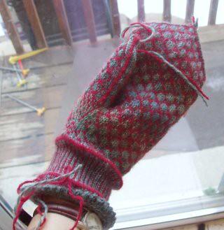 In progress, palm, 2011-03-12