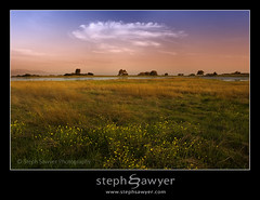 Santa Rosa Plateau Vernal Pool (Explored) (Steph Sawyer Photography (will catch up slowly)) Tags: california canon vernalpool santarosaplateau riversidecounty blueribbonwinner wildflowersunset