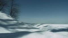 Parfois la beauté se cache tout près. Sometimes the beauty is hidden close (Amiela40) Tags: hiver surprise neige blanc vie vivre fleuve ombres routine entendre voir goûter ombrages écouter savourer lemondemerveilleuxdelaphoto whaticallart