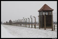 Trapped in Birkenau (Dan Wiklund) Tags: winter snow tower nazi poland barbedwire d200 2009 birkenau concentrationcamp auschwitzbirkenau auschwitzii
