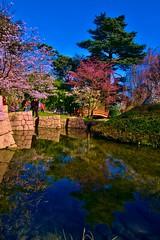 C'est le printemps ! (olivier-duval) Tags: boulogne tokina bp paysage hdr 1224 boulognebillancourt balade albertkahn 2011 jardinsalbertkahn baladesparisiennes