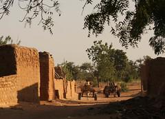 West Africa-4782