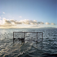 Obstacle (2plus2isfive) Tags: ocean sunset sea cloud water fence 50mm kodak wave hasselblad barrier float portra obstacle arran barricade ayrshire ardrossan saltcoats distagon 500cm c41 160nc tetenal colortec autaut