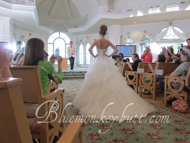 Back View of the Cinderella Platinum Anniversary Gown from Alfred Angelo