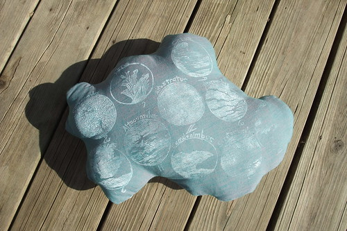 Cloud Classification pillow