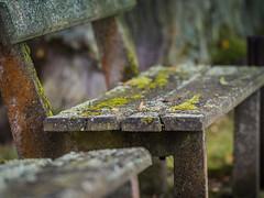Old bench (memfisnet) Tags: czechrepublic eskkrumlov travel bench park nature moss olympus olympusem5